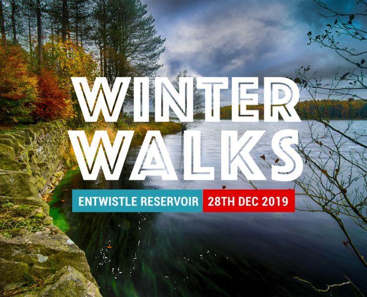 WINTER WALKS | IN AID OF WINTER MERCY
